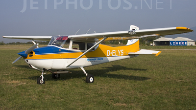 A picture of DELYS -  - [] - © Roberto Bianchi