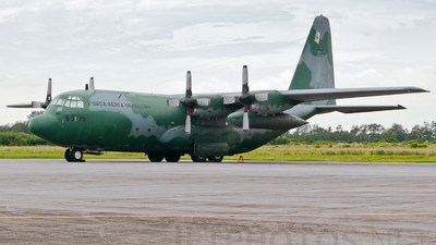 FAB2479 - Lockheed C-130M Hercules - Brazil - Air Force