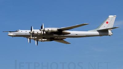 23 - Tupolev Tu-95 Bear - Russia - Air Force