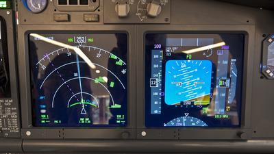 Simulator - Boeing 737-800 - Private
