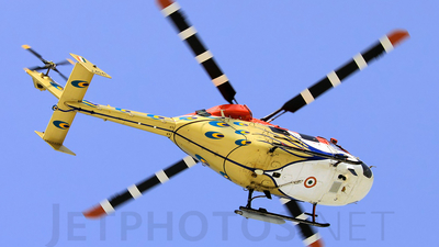 J4041 - Hindustan Aeronautics ALH Dhruv - India - Air Force