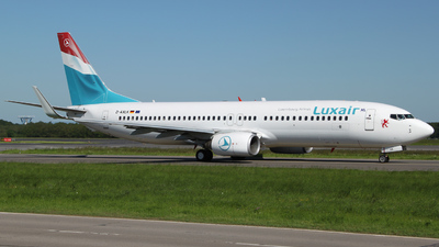D-AXLK - Boeing 737-86J - Luxair - Luxembourg Airlines (XL Airways Germany)
