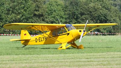 D-ELYH - Piper PA-18-95 Super Cub - Private