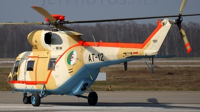 AT-12 - PZL-Swidnik W3A Sokol - Algeria - Air Force