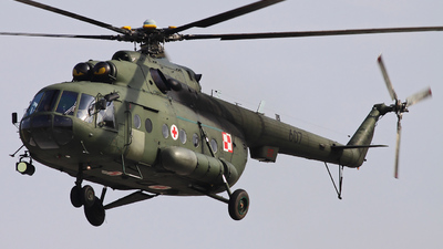 607 - Mil Mi-17 Hip - Poland - Army
