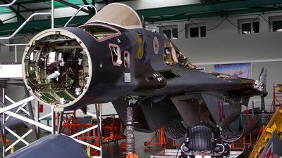 114 - Mikoyan-Gurevich MiG-29 Fulcrum - Poland - Air Force