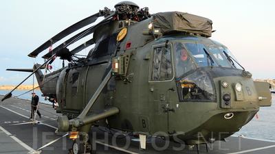ZA310 - Westland Sea King HC.4 - United Kingdom - Royal Navy