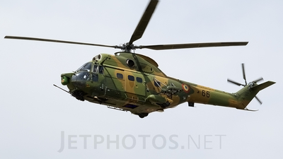66 - IAR-330L Puma SOCAT - Romania - Air Force