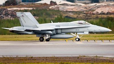 HN-445 - McDonnell Douglas F-18C Hornet - Finland - Air Force