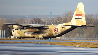 1286 - Lockheed C-130H Hercules - Egypt - Air Force