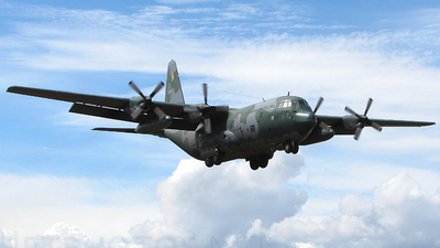A picture of FAB2459 - Lockheed C130H Hercules -  - © Bruno Sales