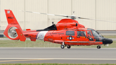 6603 - Aérospatiale MH-65C Dauphin - United States - US Coast Guard (USCG)