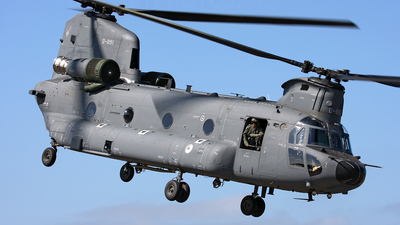 D-891 - Boeing CH-47F Chinook - Netherlands - Royal Air Force