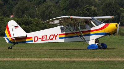 D-ELQY - Piper PA-18-95 Super Cub - Private