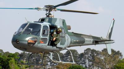 FAB8751 - Helibrás H-50 Esquilo - Brazil - Air Force