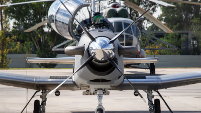 ANX-1310 - Raytheon T-6C Texan II - Mexico - Navy