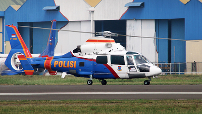 P-3101 - Eurocopter AS 365N3 Dauphin - Indonesia - Police