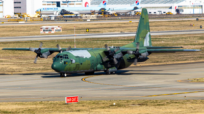 45-019 - Lockheed C-130K Hercules - South Korea - Air Force