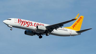 TC-IZK - Boeing 737-86J - Pegasus Airlines