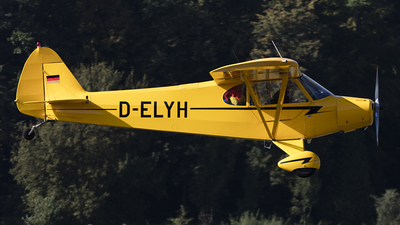 D-ELYH - Piper PA-18-95 Super Cub - Private