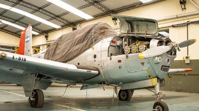 E-019 - Beechcraft T-34A Mentor - Argentina - Air Force