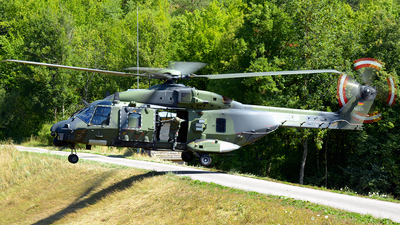 79-15 - NH Industries NH-90TTH - Germany - Army