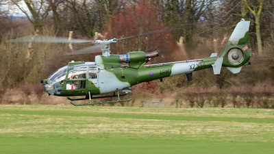 XZ334 - Westland Gazelle AH.1 - United Kingdom - Army Air Corps