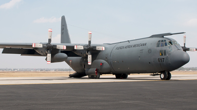 3617 - Lockheed C-130K Hercules - Mexico - Air Force
