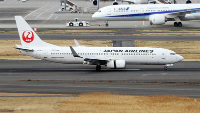 JA316J - Boeing 737-846 - Japan Airlines (JAL)