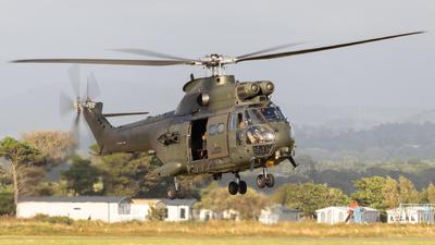 XW214 - Westland Puma HC.2 - United Kingdom - Royal Air Force (RAF)