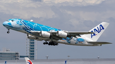 A picture of JA381A - Airbus A380841 - All Nippon Airways - © S Waki
