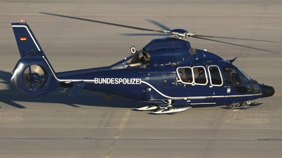 D-HLTO - Eurocopter EC 155B1 Dauphin - Germany - Bundespolizei