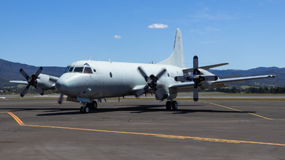 A picture of VHORI - Lockheed 285D Orion - [5660] - © Ben Moy