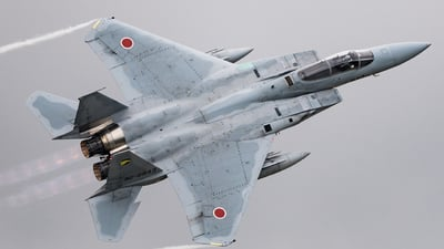 32-8943 - McDonnell Douglas F-15J Eagle - Japan - Air Self Defence Force (JASDF)