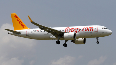 A picture of TCNCL - Airbus A320251N - Pegasus Airlines - © Paul Denton