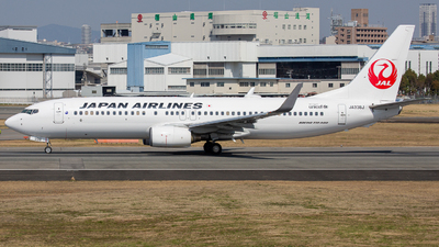 A picture of JA338J - Boeing 737846 - Japan Airlines - © Tokubee