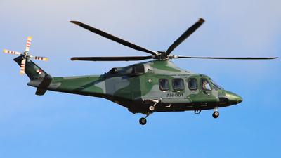 A picture of AN001 - AgustaWestland AW139 - [31433] - © George Lohmann