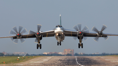 RF-94178 - Tupolev Tu-95 Bear - Russia - Air Force