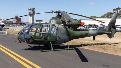 VH-OIZ - Westland Gazelle AH.1 - Private