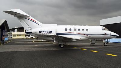 N559DM - Raytheon Hawker 800 - Private