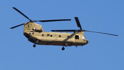 A15-310 - Boeing CH-47F Chinook - Australia - Royal Australian Air Force (RAAF)