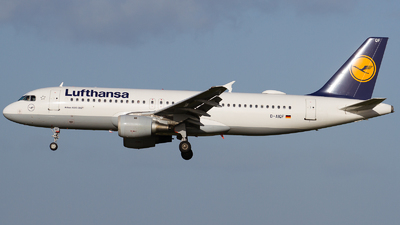 A picture of DAIQF - Airbus A320211 - [0216] - © RobertLN