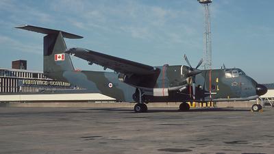 115462 - De Havilland Canada CC-115 Buffalo - Canada - Royal Canadian Air Force (RCAF)