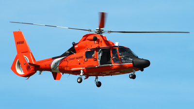 6558 - A�rospatiale MH-65D Dolphin - United States - US Coast Guard (USCG)