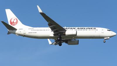 JA305J - Boeing 737-846 - Japan Airlines (JAL)