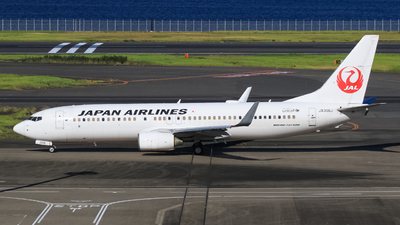 JA306J - Boeing 737-846 - Japan Airlines (JAL)