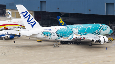 A picture of JA382A - Airbus A380841 - All Nippon Airways - © Harley Shimz