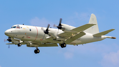 3306 - Lockheed P-3C Orion - Taiwan - Air Force