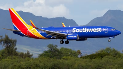 A picture of N8313F - Boeing 7378H4 - Southwest Airlines - © JacksonAviation