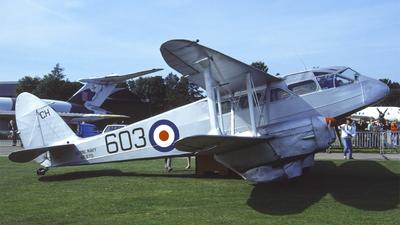 G-AGTM - De Havilland DH-89A Dragon Rapide - Private
